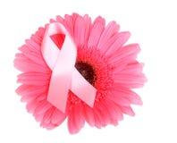 Ruban de conscience de cancer du sein sur la fleur Image libre de droits