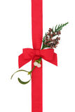 Ruban et Flora de Noël Image stock