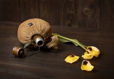 Ruban vieux flacon du ` s de soldat et ` s de St George sur le fond en bois, la fleur jaune, le concept commémoratif de la deuxiè photographie stock libre de droits