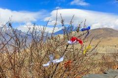 Rubans colorés pour souhaiter sur des branches d'arbre au fond de montagnes Image stock