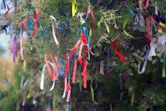 Rubans sur un arbre pour faire des souhaits Photographie stock