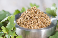 Rubbed Coriander Stock Image