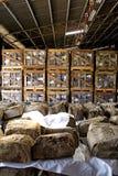 Rubber Balen in Pakhuis Royalty-vrije Stock Foto