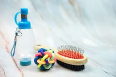 Rubber ball and comb for pets. Pet supplies concept royalty free stock images