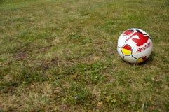 Rubber boll på ängen Fotografering för Bildbyråer