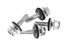Free Rubber Bonded Sheet Metal Screws Stock Photography - 36641052