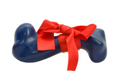 Rubber bone gift with ribbon and bow,isolated Royalty Free Stock Photo