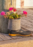 Rubber Boot Garden Royalty Free Stock Images