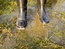Rubber boot in grass. Background Royalty Free Stock Images