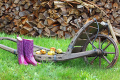 Rubber boots and apples on a wheelbarrow Royalty Free Stock Images