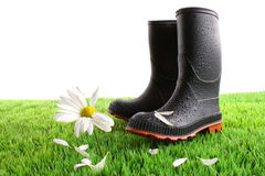Rubber boots with daisy in grass Royalty Free Stock Photography