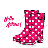 Rubber boots with dots. Fashion & Style. Stock Image