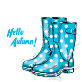 Rubber boots with dots. Fashion & Style. Stock Images