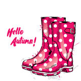 Rubber boots with dots. Fashion & Style. Royalty Free Stock Photography