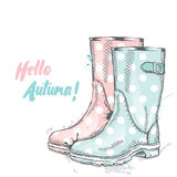 Rubber boots with dots. Fashion & Style. Royalty Free Stock Photos