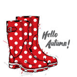 Rubber boots with dots. Fashion & Style. Stock Photo