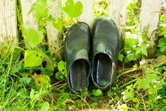 Rubber boots are dried in the grass in the garden. royalty free stock image