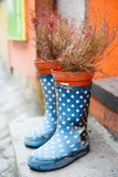 Rubber boots and flowerpot. Outdoors stock photo