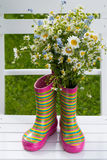Rubber boots with flowers Royalty Free Stock Image