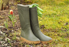 Rubber boots in a garden Stock Photo