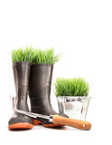 Rubber boots with grass in pot and tool Royalty Free Stock Image