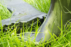 Rubber boots on the grass Royalty Free Stock Photo