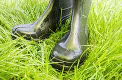 Rubber boots on the grass Royalty Free Stock Photos