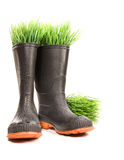 Rubber boots with grass on white. Background Royalty Free Stock Photo