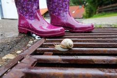 Rubber boots are ideal for rainy weather Stock Images