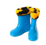 Rubber boots isolated on white Royalty Free Stock Photography