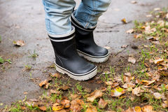 Rubber boots and leafs. Autumn, fall. Children stock images