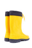Rubber boots Royalty Free Stock Photos