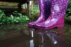Rubber boots are perfectly suited for wet and rainy weather.  royalty free stock photos