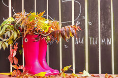Rubber boots (rainboots) and autumnal leaves are on the wooden background with drawing rain drops and cloud. Stock Image