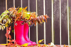 Rubber boots (rainboots) and autumnal leaves are on the wooden empty fence background. Royalty Free Stock Photos