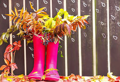 Rubber boots (rainboots) and autumnal leaves are on the wooden fence background with drawing rain drops. Royalty Free Stock Image