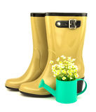 Rubber boots with spring flowers in the watering can Royalty Free Stock Photography