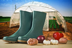 Rubber boots and various vegetable Stock Photography