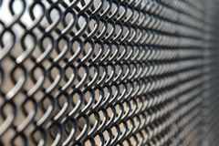 Rubber coated fence Royalty Free Stock Image
