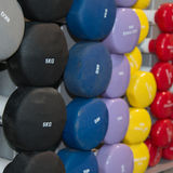 Rubber Colorful Dumbbells, Weight Fitness Equipment Stock Images