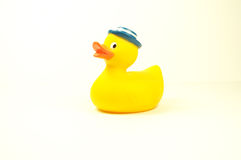 Rubber Duck Royalty Free Stock Image