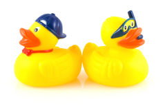Rubber duck. Stock Photography