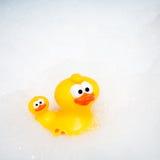 Rubber Duck Stock Photos