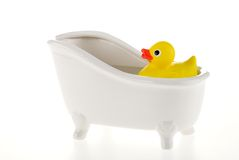 Rubber duck. Royalty Free Stock Photo
