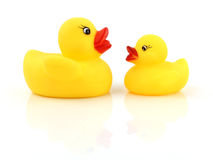 Rubber Duck. Isolated On White Background Royalty Free Stock Images