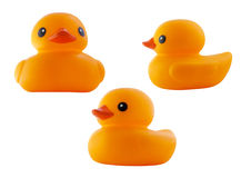 Rubber duck. Isolated on white background vector illustration