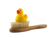 Rubber duck. On a baby brush Royalty Free Stock Photos