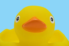 Rubber duck. A close up of a rubber duck Stock Photos