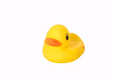 Rubber duck. An isolated rubber duck over white Royalty Free Stock Images