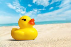 Free Rubber Duck Royalty Free Stock Photos - 61862008